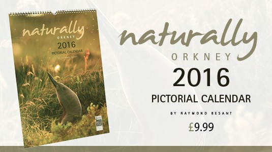 Naturally Orkney 2016 Pictorial Calendar