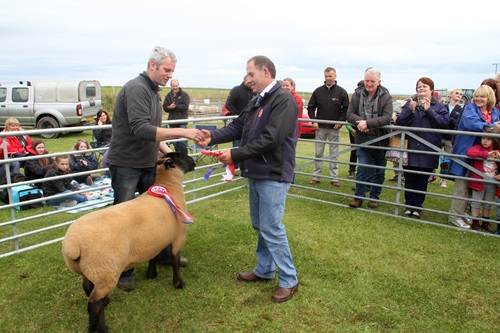 M & A Lennie, of Seaview farm, have taken the champion of the show yard title at the 2014 Sanday Show with Killer Queen.