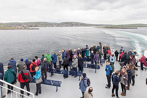 Orkney-Nature-Festival-2014-wildlife-cruise-(photo-by-David-Palmar)