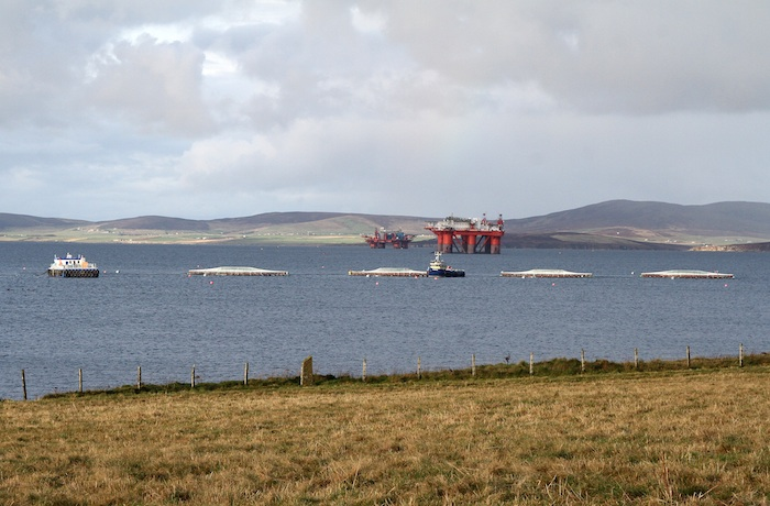 The new Salmon Farm in Scapa Flow. (www.theorcadianphotos.co.uk)