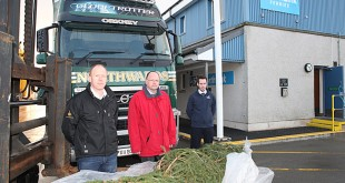 THe Christmas Trees from Norway arrive in Orkney. Pictured, from the left, are: Michael Foubister (Northwards), Leslie Burger (Orkney's Norwegian Consul) and Kenneth Dart (NorthLink).