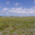 site-near-breckland-3