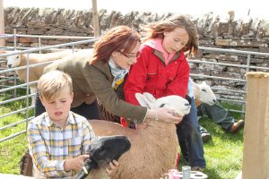 Show season continues in the East Mainland