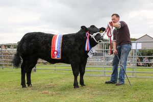Odinstone does the double at Shapinsay Show