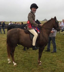 Horse champion named overall winner in Sanday