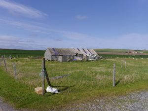 Site at Glenavon, Deerness