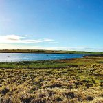 New House, West Links, Burray (5)